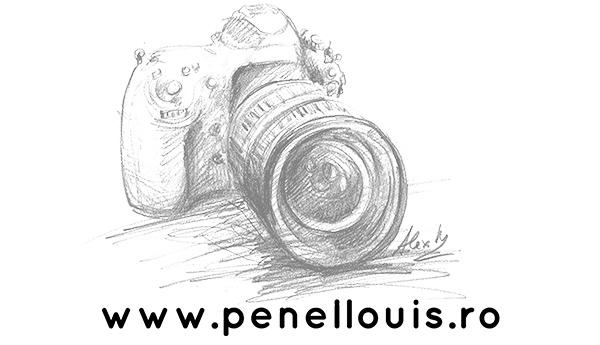 Penel